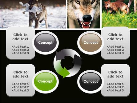 Wolf PowerPoint Template Slide 9