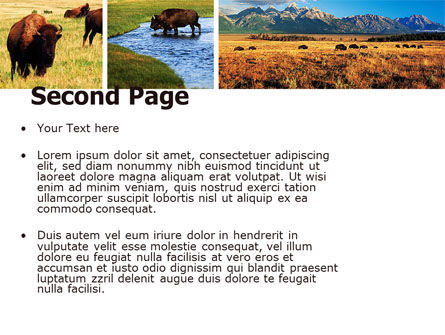 Bison PowerPoint Template, Slide 2, 05455, Animals and Pets — PoweredTemplate.com