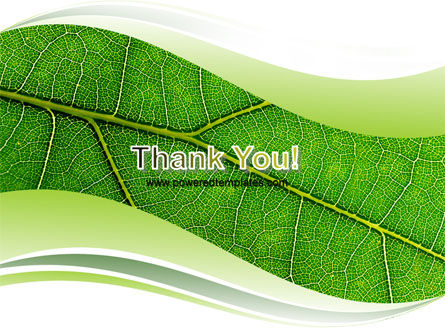 Green Leaf Wave PowerPoint Template Slide 20