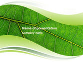 Nature & Environment: Green Leaf Wave PowerPoint Template #05458