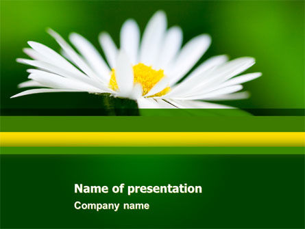 Daisy Chain PowerPoint Template, 05462, Nature & Environment — PoweredTemplate.com