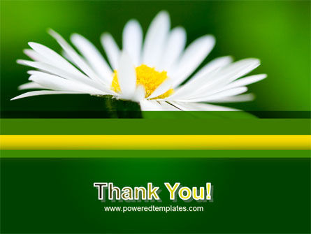 Daisy Chain PowerPoint Template Slide 20