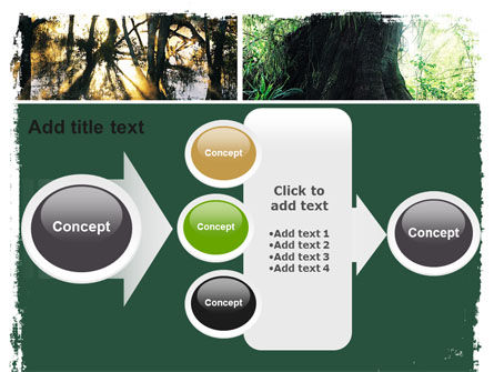 Jungle PowerPoint Template Slide 17