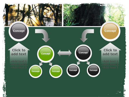 Jungle PowerPoint Template Slide 19