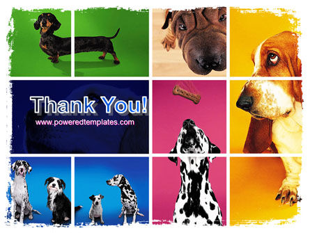 Dog Breed PowerPoint Template Slide 20