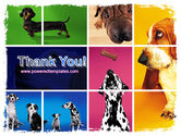 Dog Breed PowerPoint Template#20