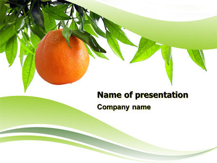 Orange Tree PowerPoint Template, 05547, Agriculture — PoweredTemplate.com