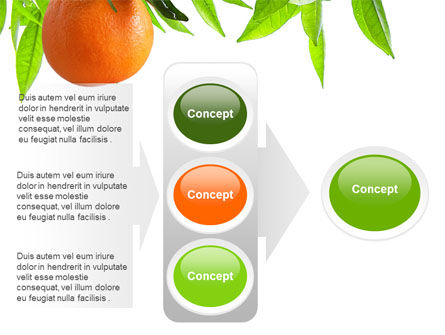 Orange Tree PowerPoint Template Slide 11