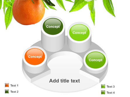 Orange Tree PowerPoint Template Slide 12