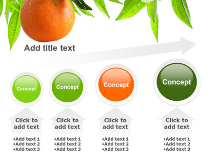 Orange Tree PowerPoint Template Slide 13
