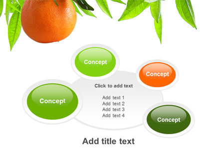 Orange Tree PowerPoint Template Slide 16