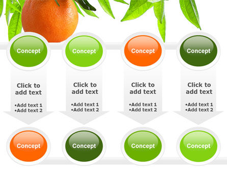 Orange Tree PowerPoint Template Slide 18