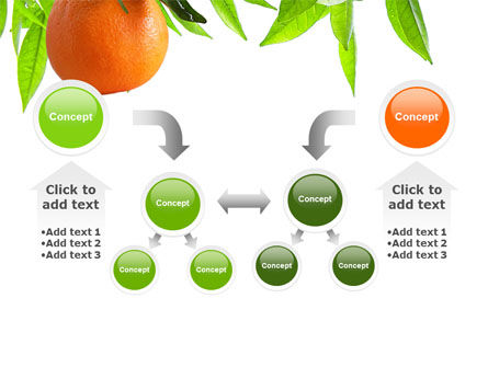 Orange Tree PowerPoint Template Slide 19