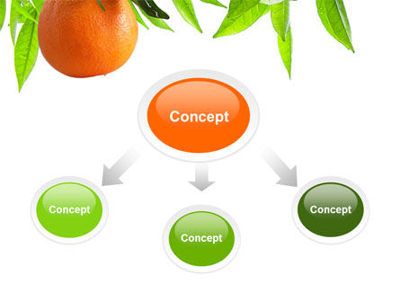 Orange Tree PowerPoint Template Slide 4