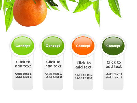 Orange Tree PowerPoint Template Slide 5