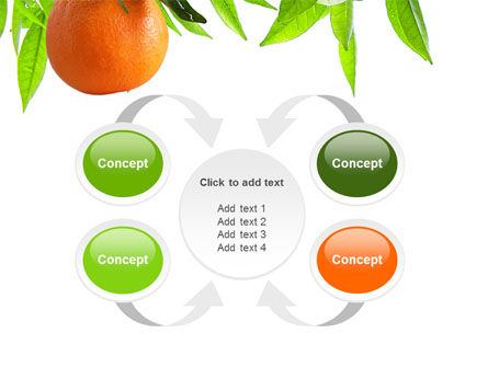 Orange Tree PowerPoint Template Slide 6