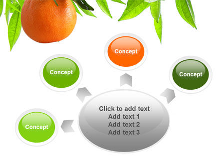Orange Tree PowerPoint Template Slide 7