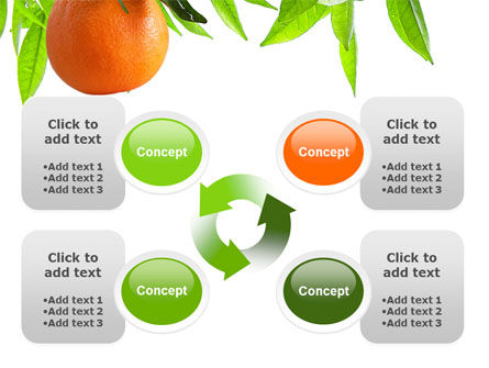 Orange Tree PowerPoint Template Slide 9