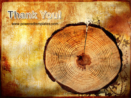 Growth Rings PowerPoint Template Slide 20