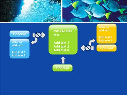 Underwater Life PowerPoint Template Slide 13