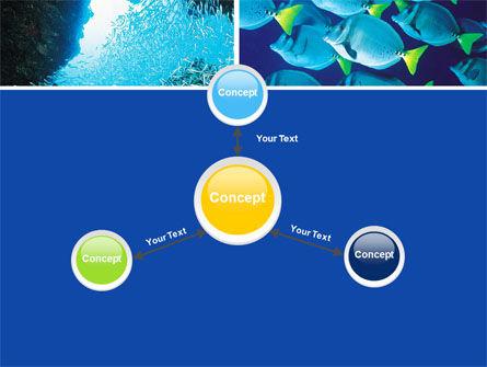 Underwater Life PowerPoint Template Slide 14