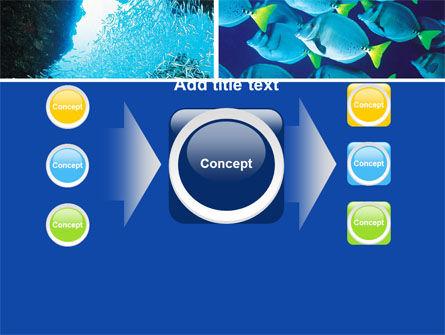 Underwater Life PowerPoint Template Slide 17