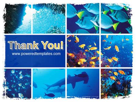 Underwater Life PowerPoint Template Slide 20
