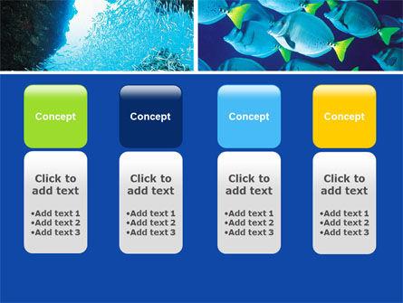 Underwater Life PowerPoint Template Slide 5