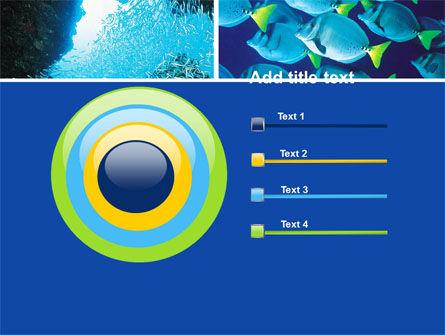 Underwater Life PowerPoint Template Slide 9