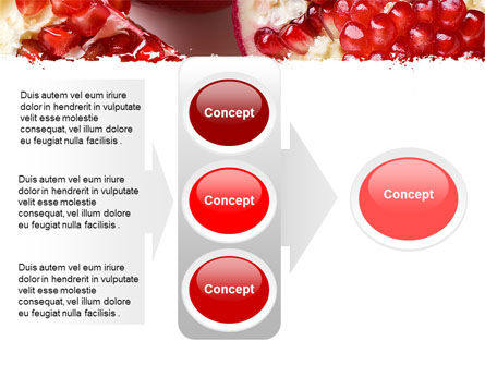Pomegranate On A Green White Background PowerPoint Template Slide 11