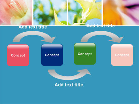 Blooming Lilies Free PowerPoint Template Slide 4