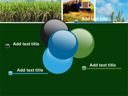 Sugar Cane PowerPoint Template Slide 10