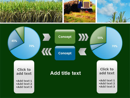 Sugar Cane PowerPoint Template Slide 11