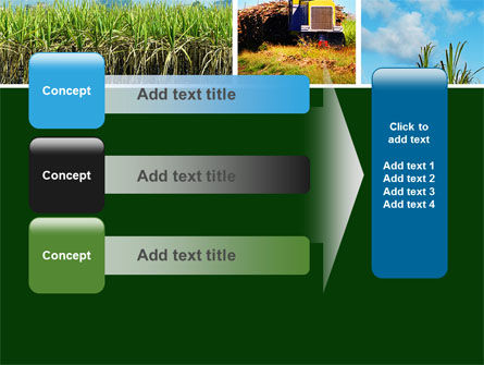 Sugar Cane PowerPoint Template Slide 12