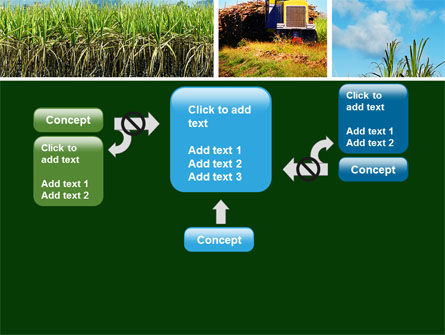 Sugar Cane PowerPoint Template Slide 13