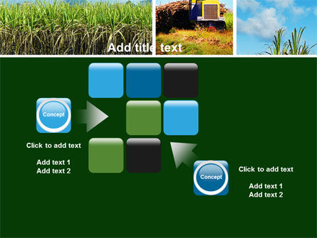 Sugar Cane PowerPoint Template Slide 16