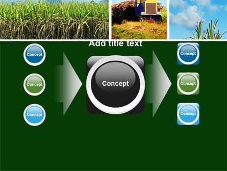 Sugar Cane PowerPoint Template Slide 17