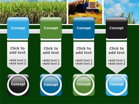 Sugar Cane PowerPoint Template Slide 18