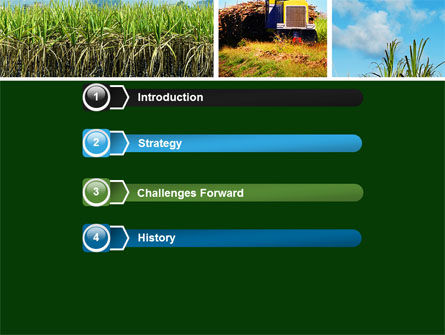 Sugar Cane PowerPoint Template Slide 3