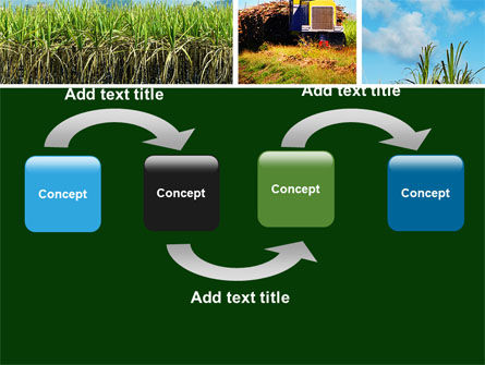 Sugar Cane PowerPoint Template Slide 4