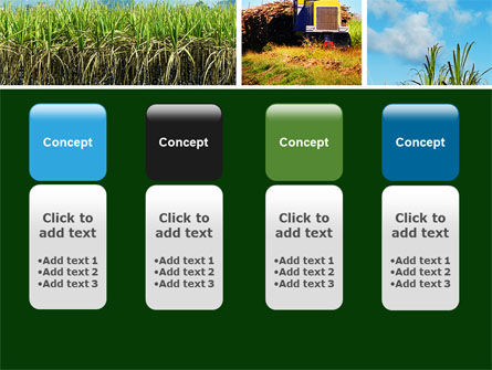 Sugar Cane PowerPoint Template Slide 5