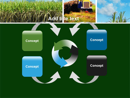 Sugar Cane PowerPoint Template Slide 6
