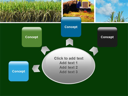 Sugar Cane PowerPoint Template Slide 7