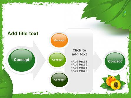 Peach PowerPoint Template Slide 17