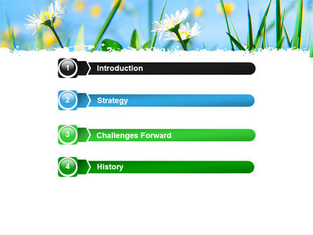 Field Flowers PowerPoint Template, Slide 3, 05804, Nature & Environment — PoweredTemplate.com