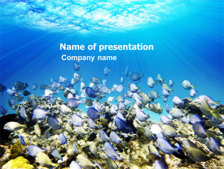 Coral Skerry PowerPoint Template, 05817, Nature & Environment — PoweredTemplate.com