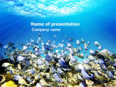 Nature & Environment: Coral Skerry PowerPoint Template #05817