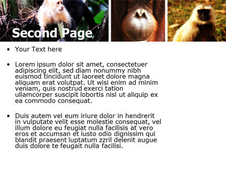 Primates PowerPoint Template, Slide 2, 05820, Animals and Pets — PoweredTemplate.com