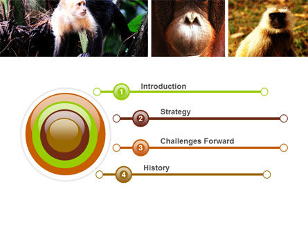 Primates PowerPoint Template, Slide 3, 05820, Animals and Pets — PoweredTemplate.com