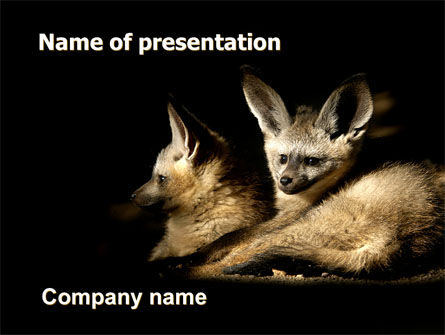 Bat-eared Fox Free PowerPoint Template, 05837, Animals and Pets — PoweredTemplate.com